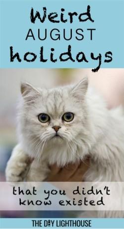 weird august holidays