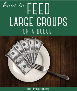 feed large groups on a budget