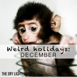 weird december holidays thumbnail