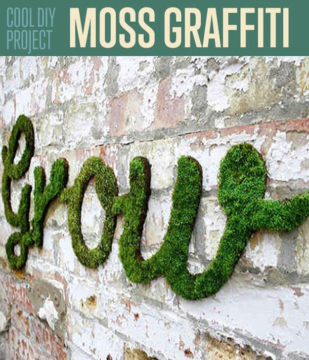 moss grafiti