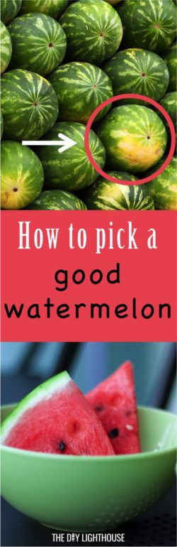 how to pick a good watermelon | tips and tricks for picking out a ripe watermelon