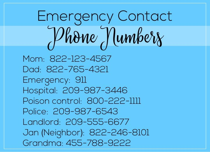 A list of things to leave the babysitter if they're watching a toddler. Babysitter essentials include: emergency contact phone numbers.