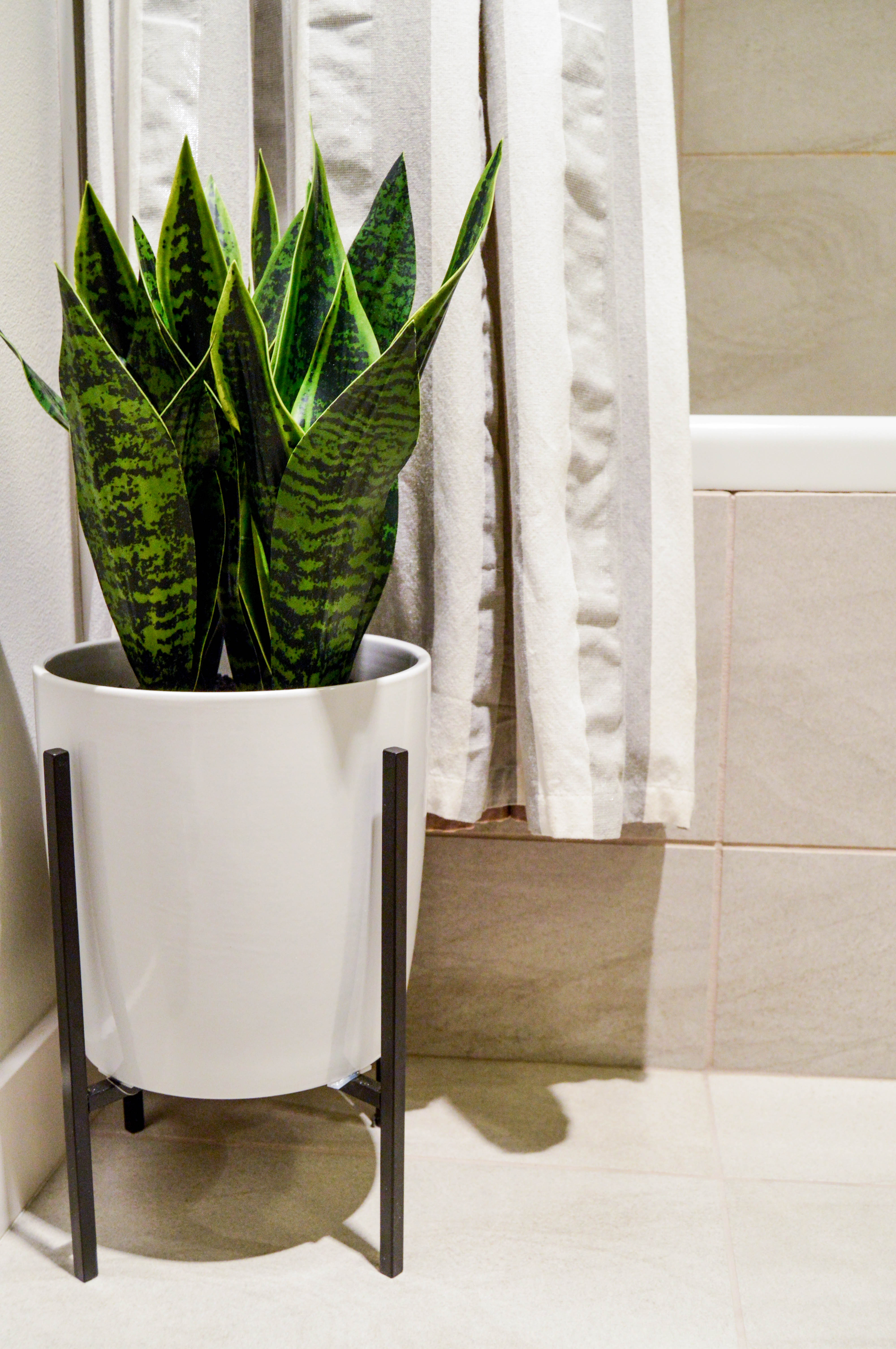 Faux or real plants: Bathroom Summer Refresh